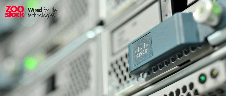 ¿Son los servidores Cisco la mejor opción?