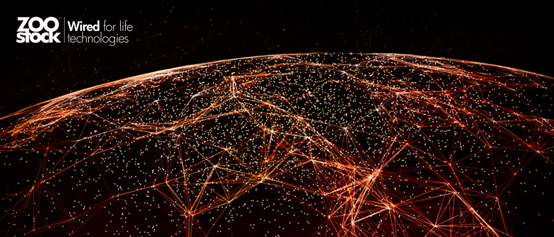 Evolución digital: clave para la transformación digital