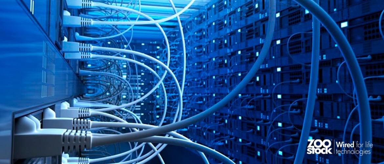 Lo que necesitas saber sobre routers y switches y nunca te atreviste a preguntar