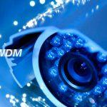 ZOOstock redes DWDM