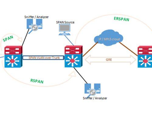 ZOOStock SPAN/RSPAN/ERSPAN